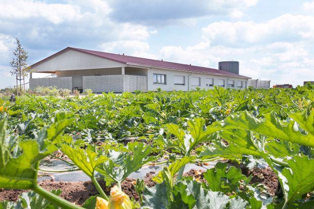 Unterkunftsgebäude mit natürlicher Putzfassade